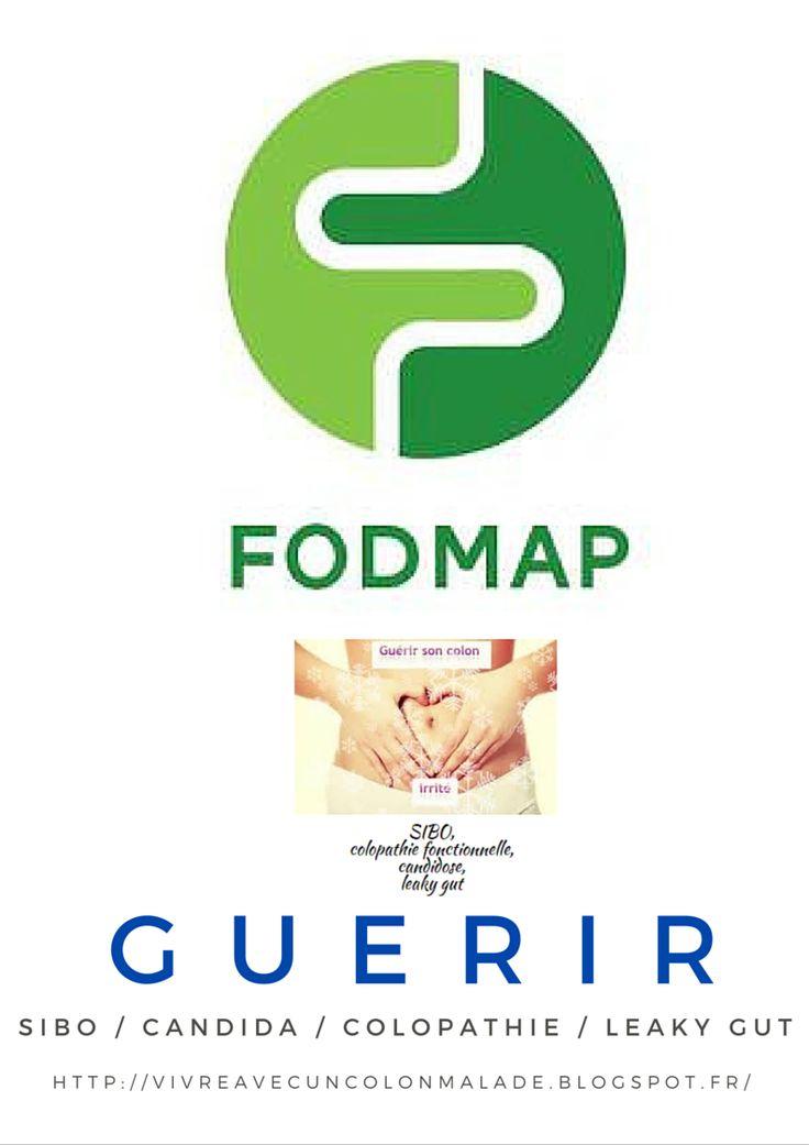 La liste complète de tous les aliments pauvres en FODMAP : à télécharger - Guérir ses intestins, colopathie fonctionnelle, SIBO, candidose, brûlures d'estomac