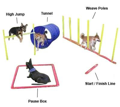 Dog Agility Starting Kit Dogs love challenges, start with this agility kit complete set, includes: Weave Poles, High Jump, Open Dog Tunnel, Pause Box, Start / Finish Line, Stop Watch and Award Ribbons, Set Up and Usage Instructions and Game Rules and Training Tips Booklet.