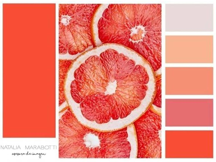 Combinación de tonos que va desde el color coral, pasando por los rosas pálidos, hasta terminar en gris.