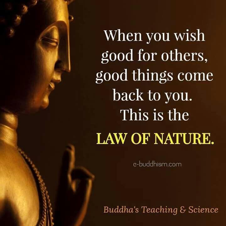 buddha zitate englisch