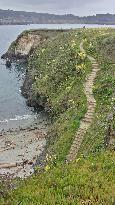Treasure Island Flea Market - San Francisco - Reviews of Treasure Island Flea Market - TripAdvisor