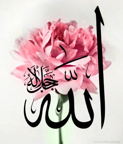 """Allah calligraphy on rose photo """"الله جل جلاله"""" """"Allah, the Almighty"""" Originally found on: neverwithoutislam"""