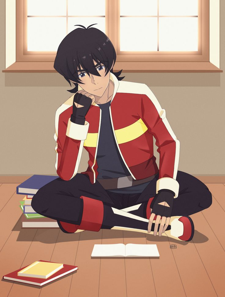Voltron Lions Colors Keith reading books fr...