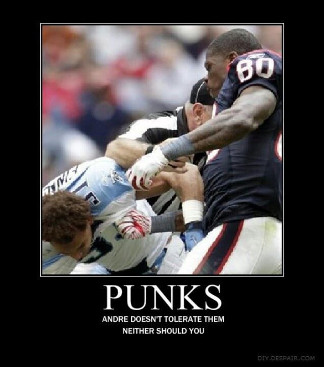 Texans Titans  Andre Johnson Vs Cortland Finegan Throwdown.
