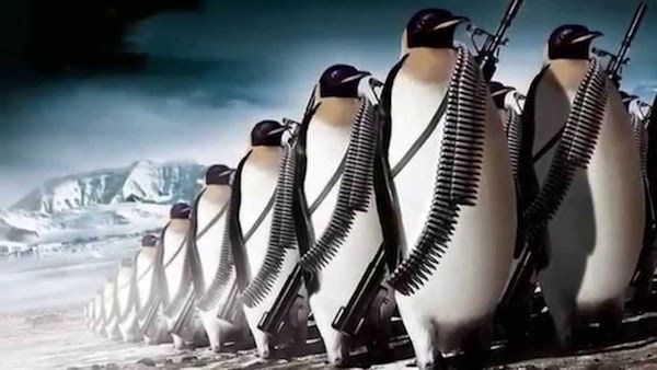 The Penguin in the room: what to do until Google rolls out its latest update