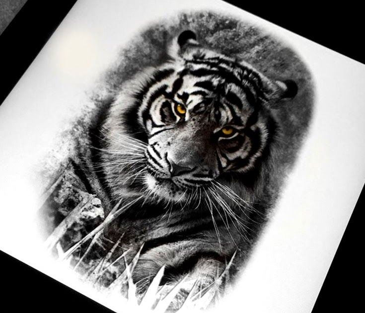 Best 25 Tiger Tattoo Design Ideas On Pinterest Tiger Tattoo Tiger Tattoo Back And Drawings Yaponskie Risunki Volny Eskizy Tatuirovok Idei Dlya Tatuirovok