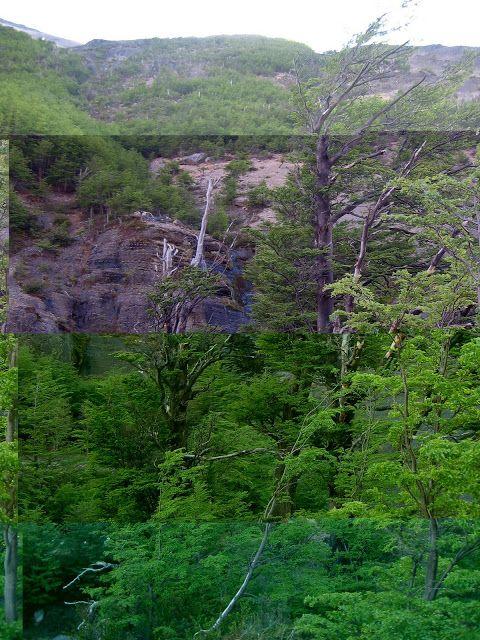 NINIVEMAIL: Cesty po Chile - Patagonii obrázky. Hezké dny s ob...
