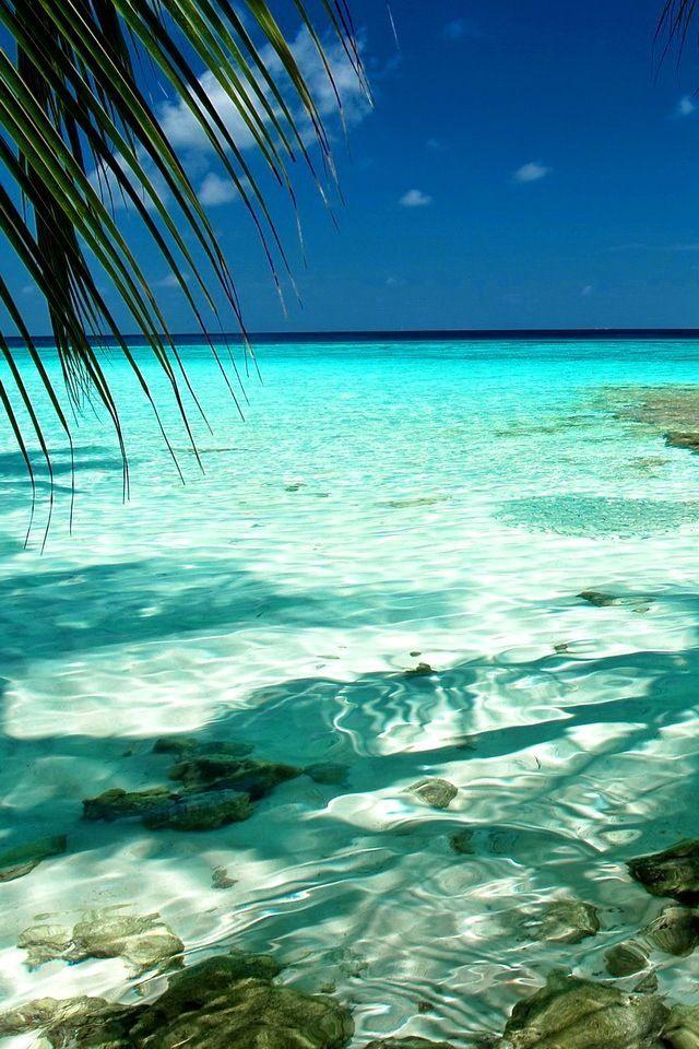 Que praia maravilhosa!!