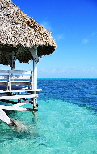 In just over 2 months!! Pelican Reef. Ambergris Cay, Belize