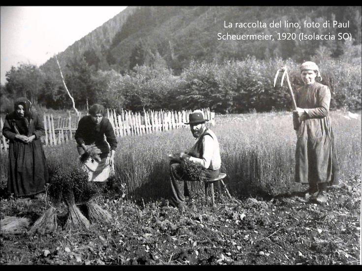Testimonianza registrata il 26.X.1986 in dialetto veneto di Treviso. Trascrizione in italiano: « [Le donne] cominciavano in agosto, a filare, e d'inverno ave...