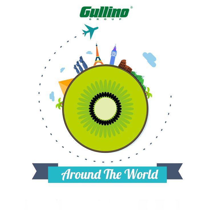 Around the #world  Buon #viaggio da #Gullino #estate #vacanze #holidays #fruit #frutta #kiwi