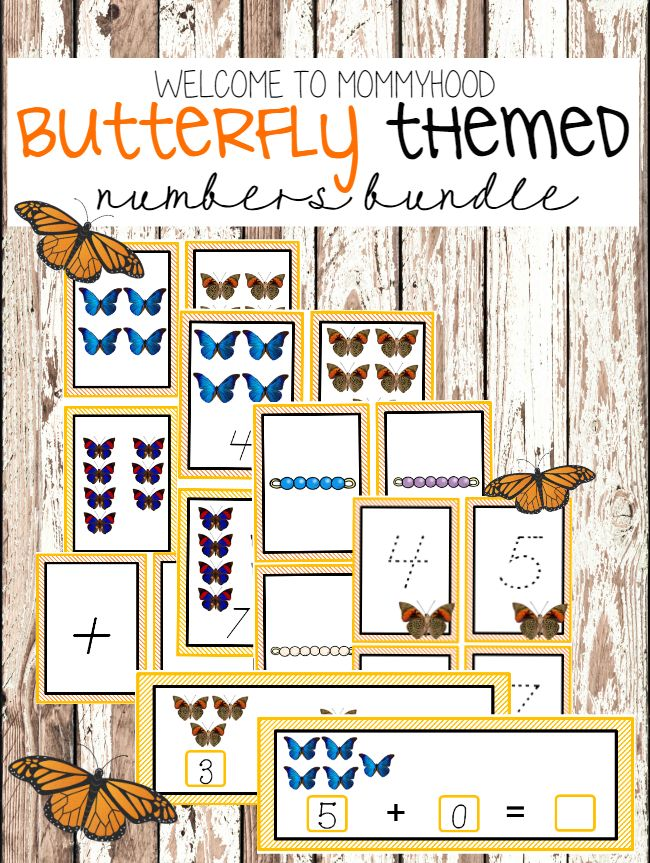 Butterfly numbers bundle