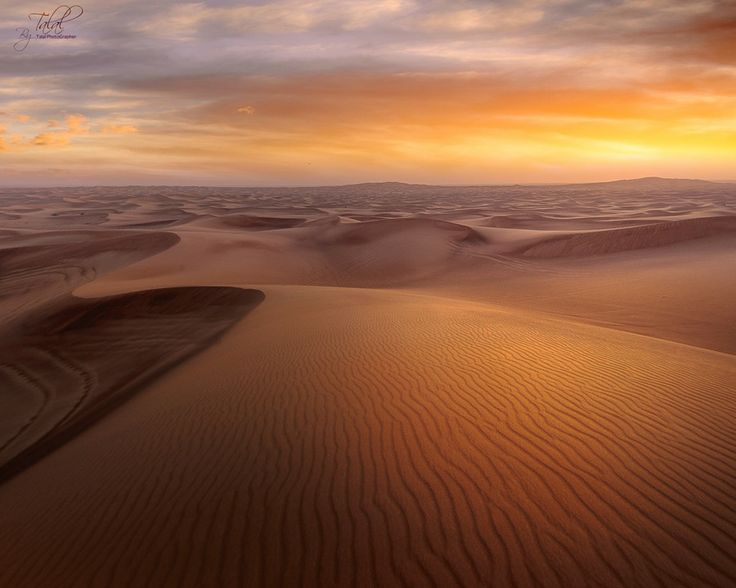 Photo Desert by talal70d on 500px