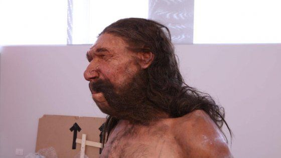 Lavoro Bari  Grazie al laser senza toccare lo scheletro ancora incastrato nella roccia scienziati e paleo-artisti hanno fatto rinascere il nostro antenato di Neanderthal  #LavoroBari #offertelavoro #bari #Puglia Così hanno ricostruito il corpo e il volto dell'uomo di Altamura
