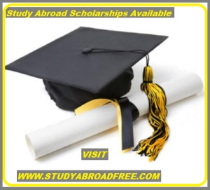 http://studyabroadfree.com/study-abroad-scholarships-2013-application/  Study Abroad Scholarships 2013 ApplicationStudy Abroad