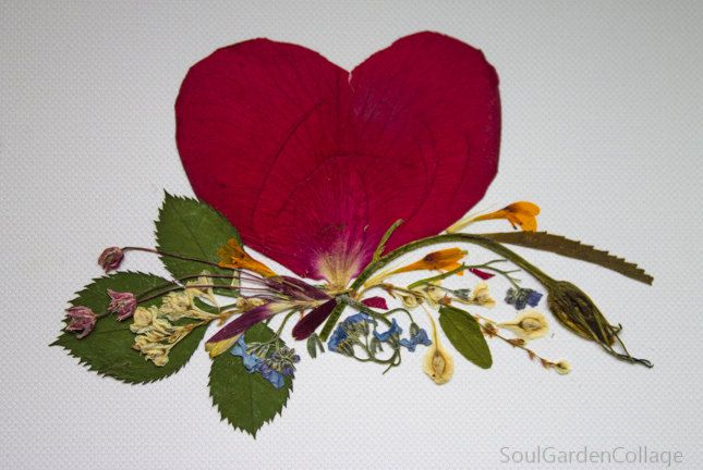 Love card Greeting card Unique ST Valentines day card OOAK Handmade Real Pressed and dried flowers collage by SoulGardenCollage on Etsy