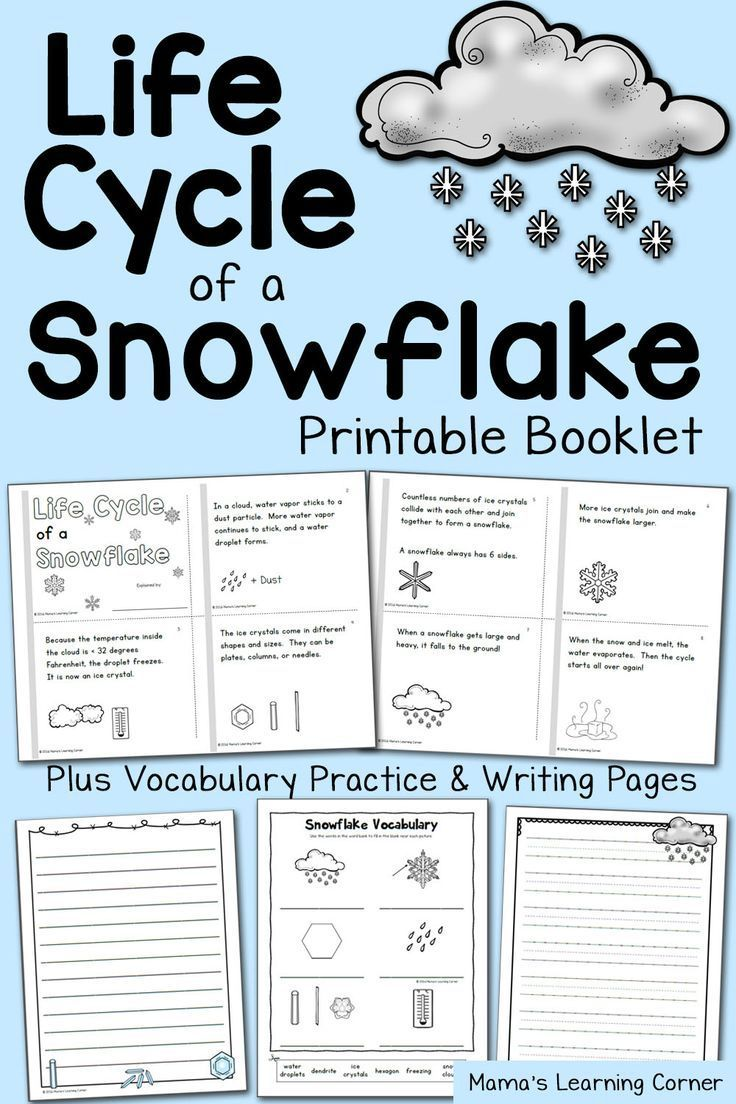 Life Cycle Of A Snowflake Booklet Kindergarten Science