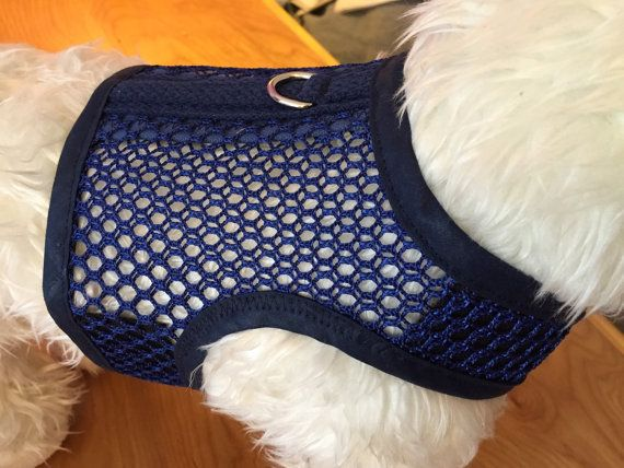 Arnés de perro pequeño transpirable malla azul por CustomDogJacket