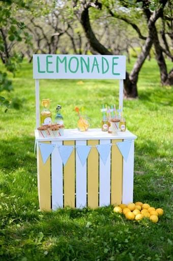 R6720 Lemonade Stand In The Field Printed Backdrop - Rebate Eligible