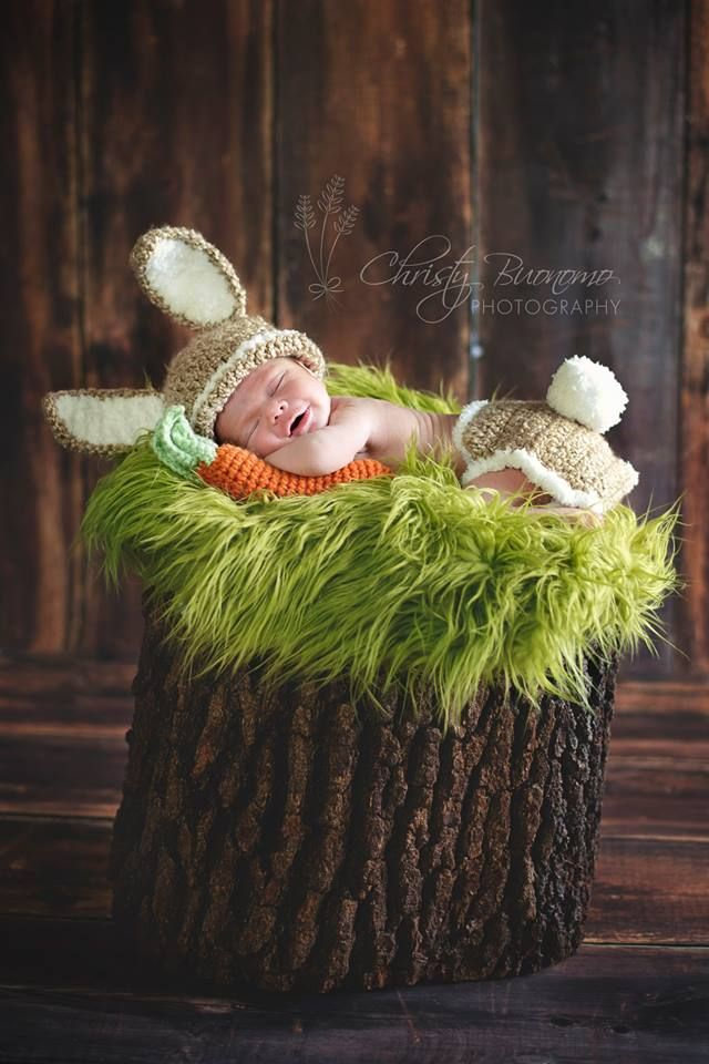 Coelhinho da Páscoa recém-nascido de imagem - bebê Ryder em Cucina de Katie!