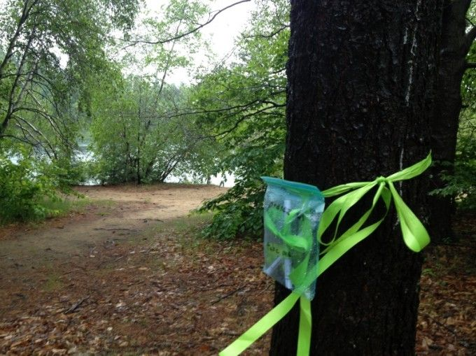 Green ribbons in St. Lazare are a symbol of how residents can make things happen.