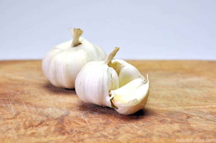 Garlic For Prevention and Cure of Ear Infections