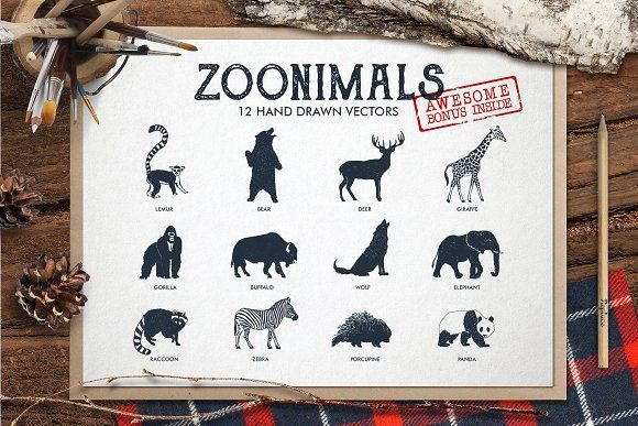ZOONIMALS. Hand Drawn Animals by Cosmic Store on @creativemarket