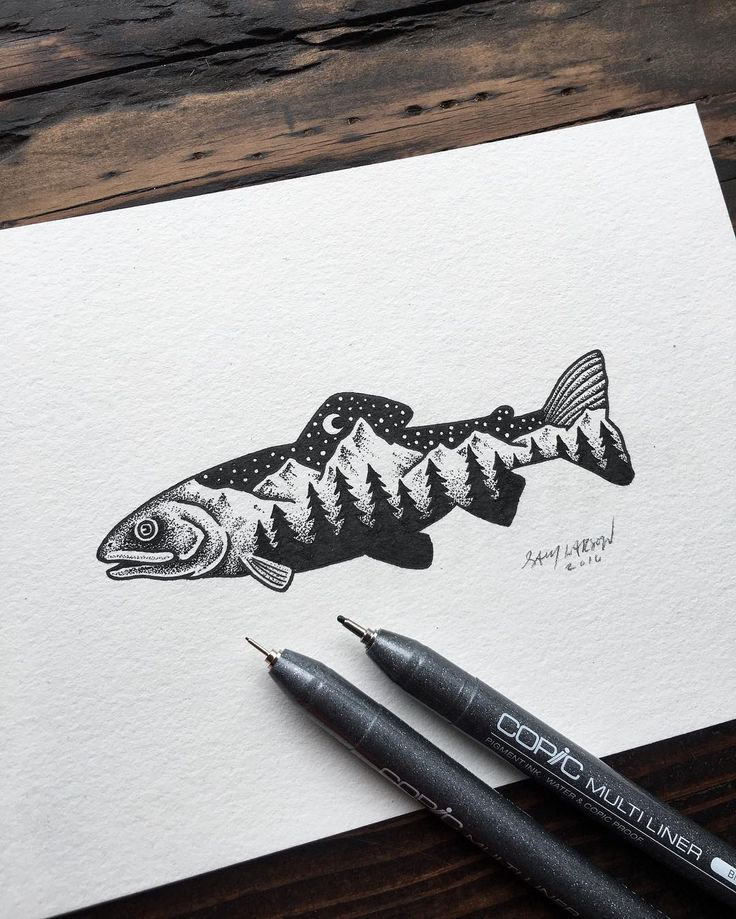 Little trout from today. Hope everyone's week is off to a good start! Sam Larson Freelance Artist - Portland, OR