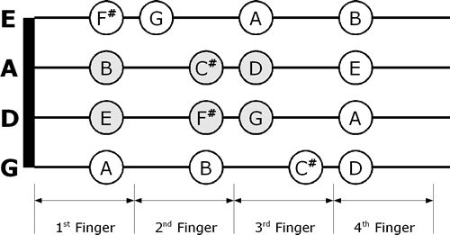 Ukulele Chords Finger Chart And Fretboard Poster