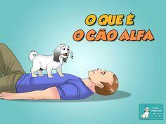 O que é o cão alfa - http://www.caesmania.com.br/o-que-e-o-cao-alfa