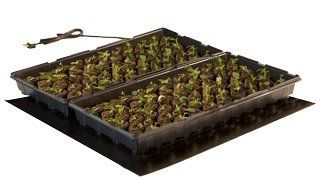 Seedling Heat Mat 20x20 ~ 45W by Hydrofarm. $46.79. Re-engineered for better performance and greater durability! The new, stronger heating wire, and thicker multi-layer construction offer more uniform heating and the durability to withstand rugged greenhouse environments. Increases success of seedlings and cuttings Warms root area 10-20˚F over ambient temperature to improve germination Light, watering and planting information on mat Waterproof construction 6 ...