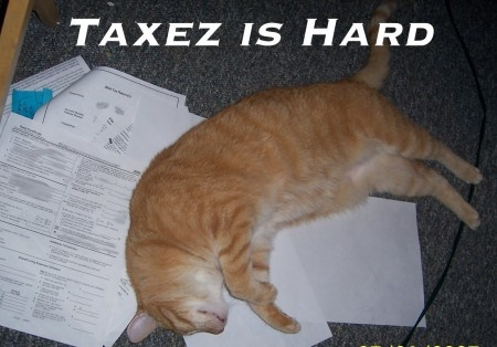 how to bring your taxes to accountant