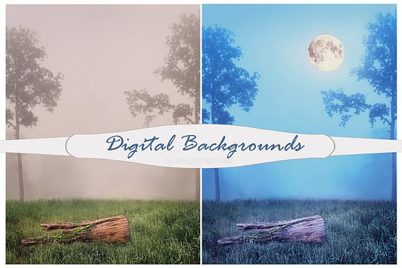 Digital Background, Digital Backdrop, Photo Background, photo drop, moon, backgrounds,photoshop template, night,tree trunk,fog,wood,Jpeg