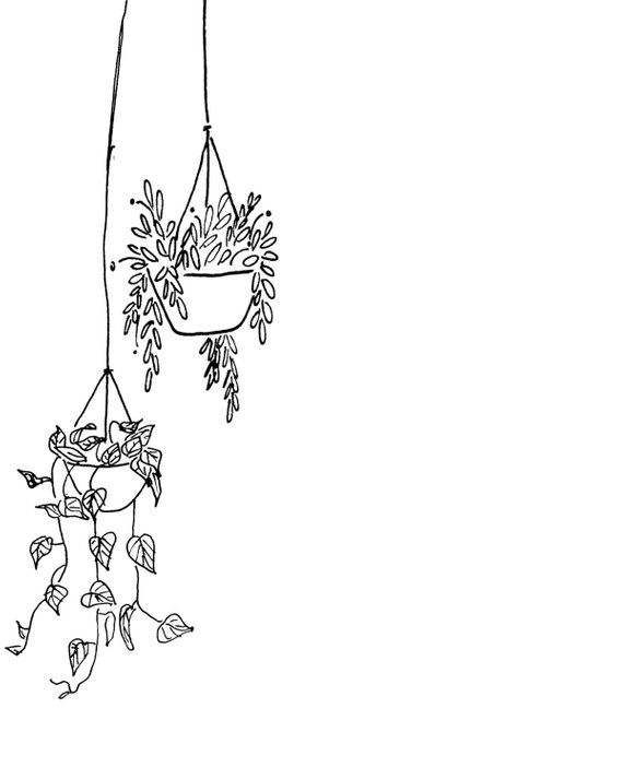 Black and White Hanging Plants Printable   Instant Digital Download