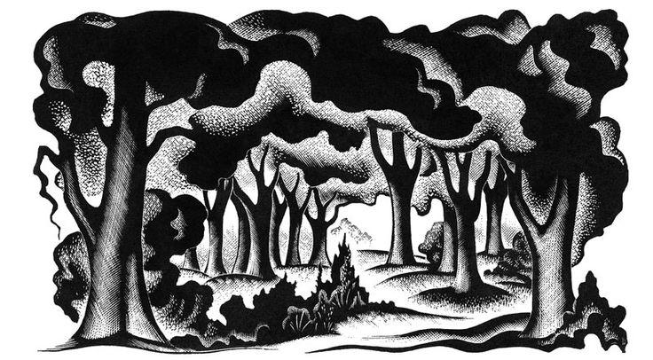 Through the Woods   Little Toller Books H.E. Bates