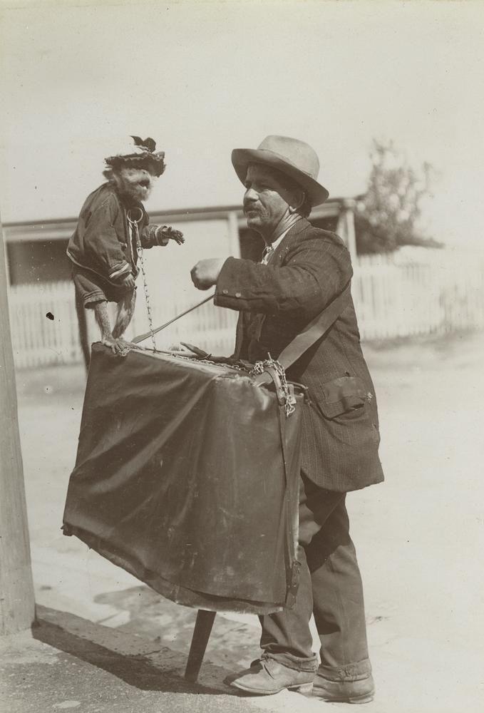 Barrel organ man and his pet monkey, Brisbane, 1908