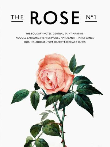 The Rose - Graphic Design - Poster, Rose, Plant, Image, Illustration, Minimal