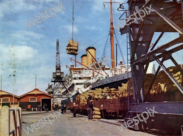 Western Mail colour - Pic taken from a direct natural colour photograph. Supplement to 'The Western Mail', May 20, 1937.  The Golden Grain - Loading wheat at Victoria Quay, Fremantle. Although some of this State's annual grain harvest is shipped from Albany, Bunbury and Geraldton and other outports, Fremantle is still the main export centre.