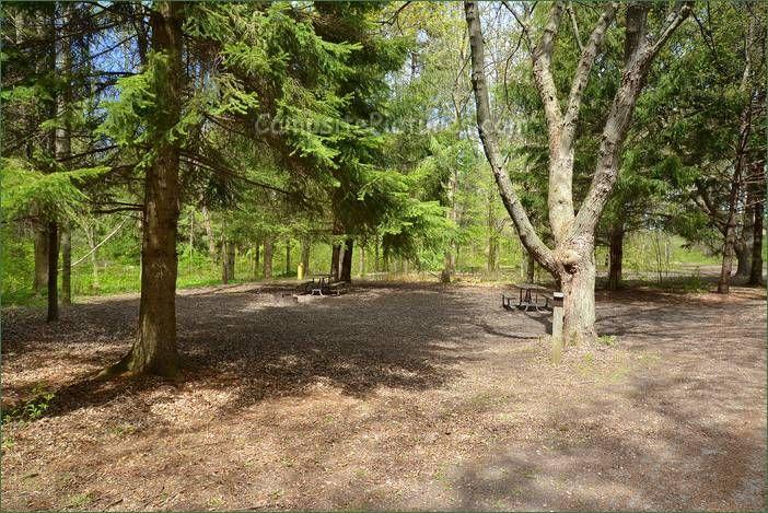 Mara Provincial Park, Camping in Ontario Parks