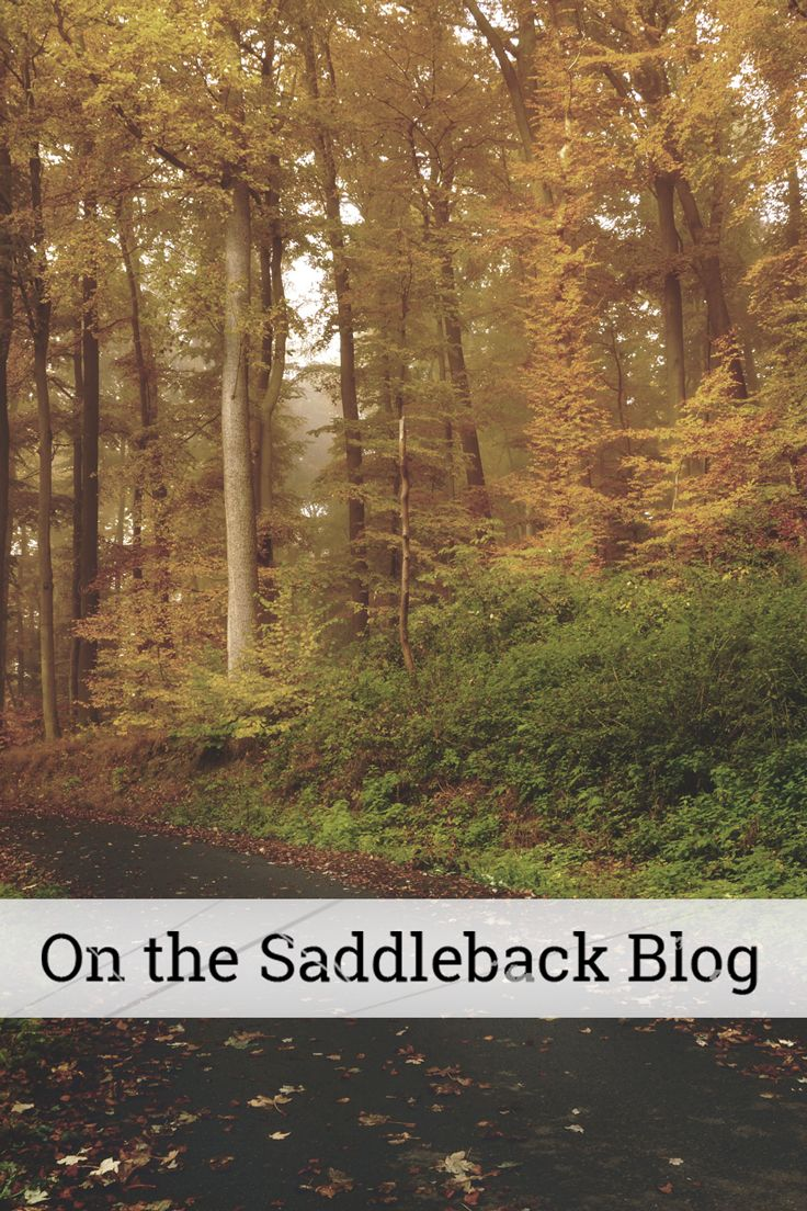 On the Saddleback Blog: Renee reflects on the charms and challenges of living in a small town. Come read more!