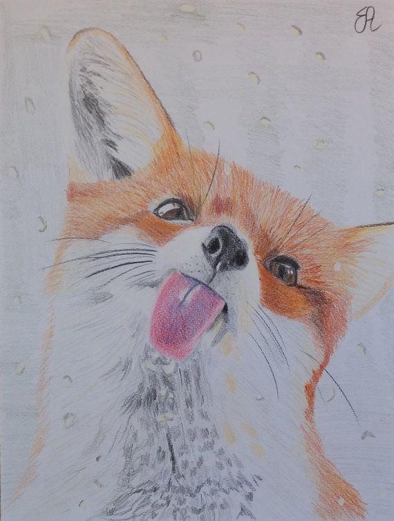 Ritratto Disegno Volpe rossa con matite colorate e di EleonorArte