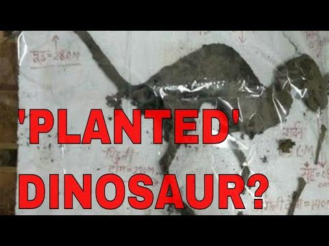 """(6) PLANTED 3D-PRINTED """"DINOSAUR CREATURE"""" W/ FLESH ON BONES IN AN ELECTRICAL STATION - YouTube"""