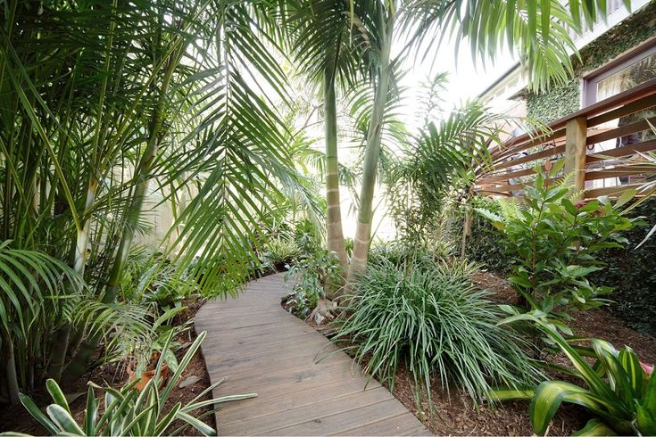 Balinese Tropical Garden Design – Balinese Style Garden, Northern Beaches Sydney. Materials – Bright Colours, Foliage Colour, Kentia Palm, Recycled Railway Sleepers, Sawn Sandstone Paving, Flax, Liriopes, Strellitzia. Timber Decking pathway. Tropical Landscape Design Sydney path