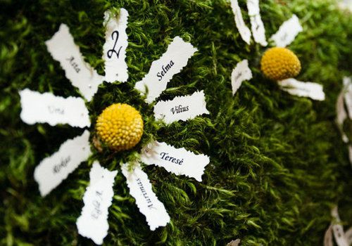 Plan de table mousse et fleurs