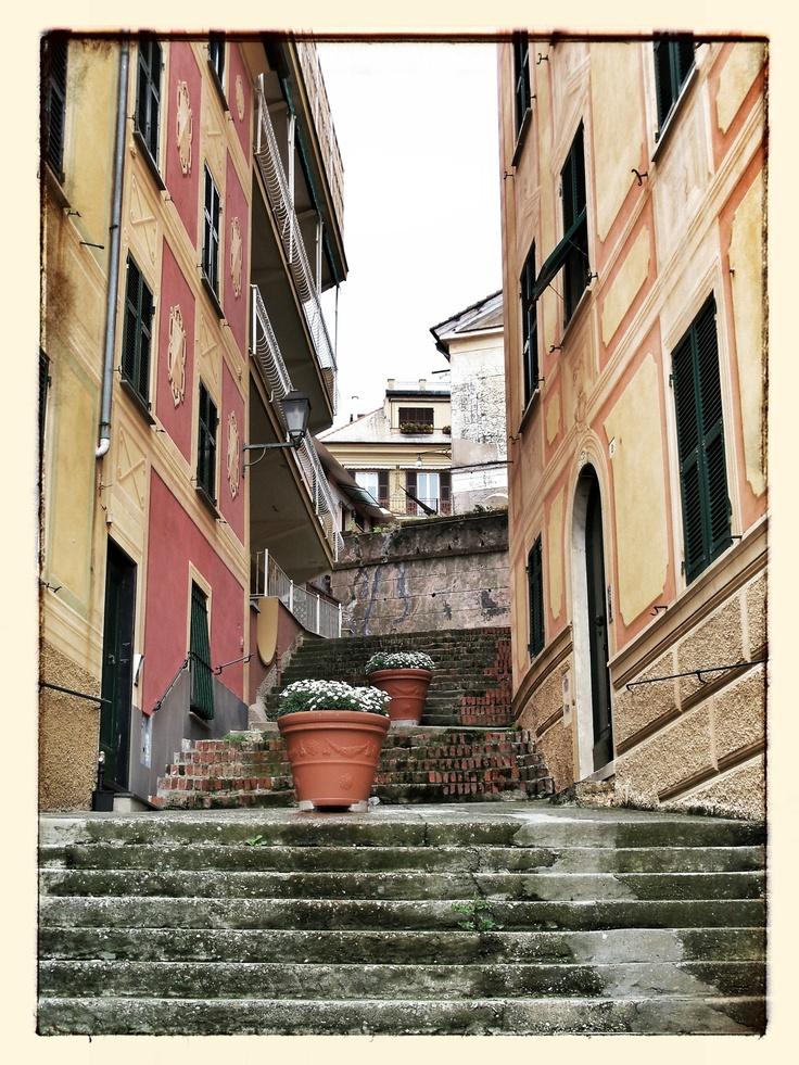 Santa Margherita Lingure - Italy
