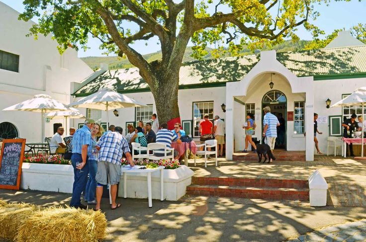 John & Lynne Ford's Main Ingredient MENU blogs: Landskroon and Laborie at Paarl's Ommiberg Festival