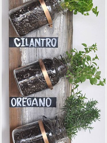 Herbs in a Ball jar!  Doing this...