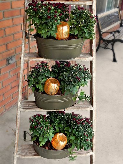 A super cute way to water your plants this fall.