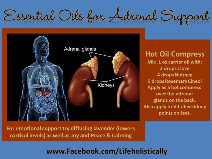 """Supporting your adrenal glands are very crucial to many aspects of your health.  #YoungLiving's essential oils can help with this balance  """"Like"""" my Facebook page called Essentially Sp'oiled Family for more info, recipes, tips and testimonies!"""