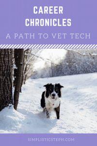 Career Chronicles: A Path to Vet Tech | Simplistic Steph